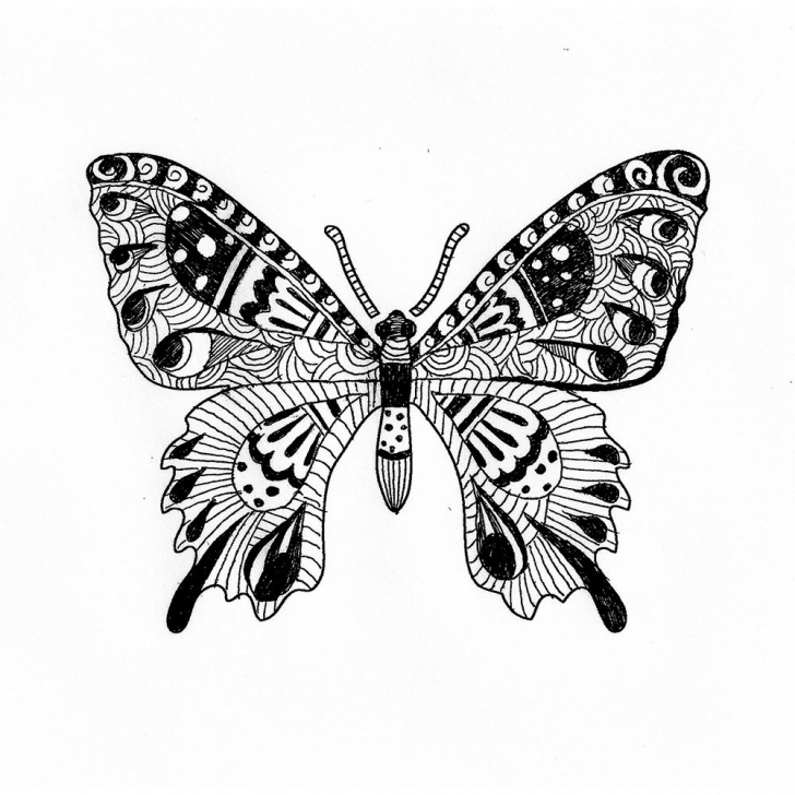 Good Butterfly Stencil Art for Beginners Butterfly Stencils For Doodling - Doodle Stencils For Coloring And Tangling Photos