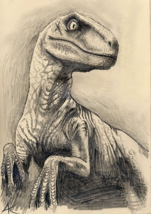 Dinosaur Pencil Drawing