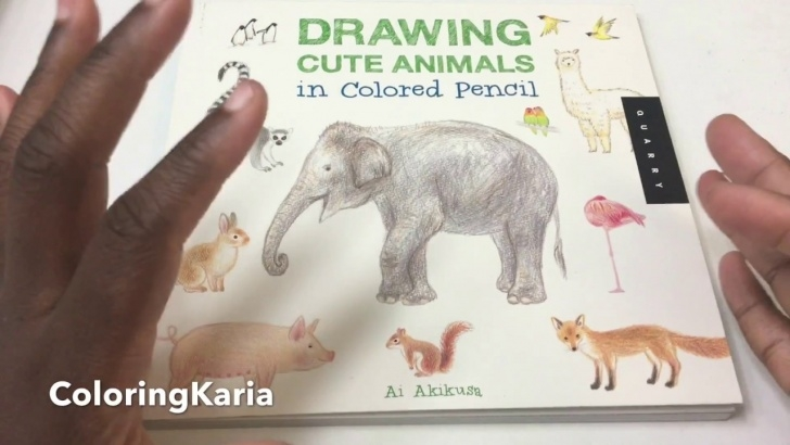 Good Drawing Cute Animals In Colored Pencil Techniques for Beginners Drawing Cute Animals In Colored Pencil By Ai Akikusa Image