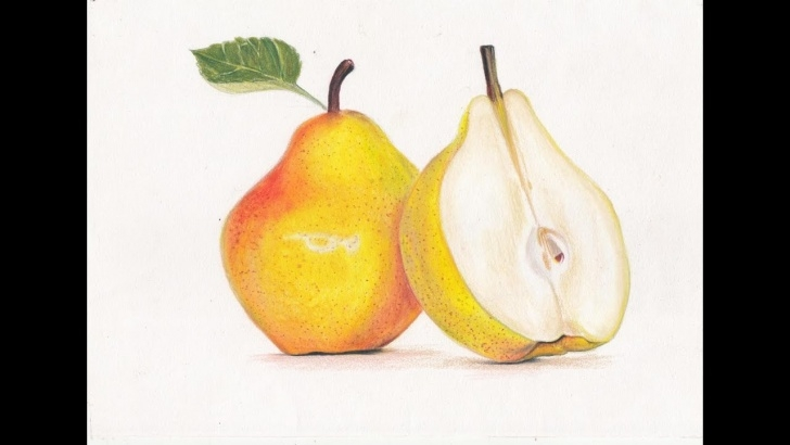Good Drawing Fruit With Colored Pencils Free Drawing A Pear- Prismacolor Colored Pencils! Photo