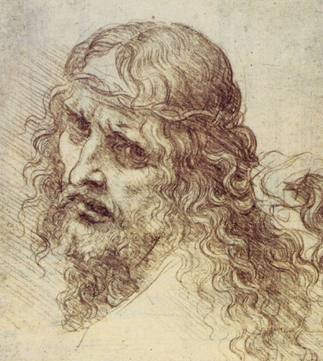 Good Leonardo Da Vinci Pencil Drawings Techniques The Drawings Of Leonardo Da Vinci Photos