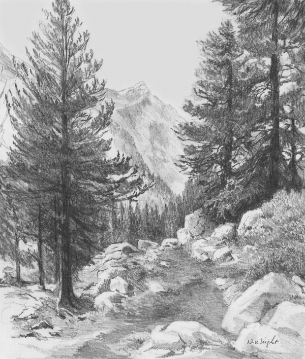 Good Nature Drawing Pencil Shading Techniques for Beginners Nature Drawing - Pencil Shading Workshop - One Day - By Konsult Art At  Bellandur Outer Ring Road, Bangalore - Events High Photo