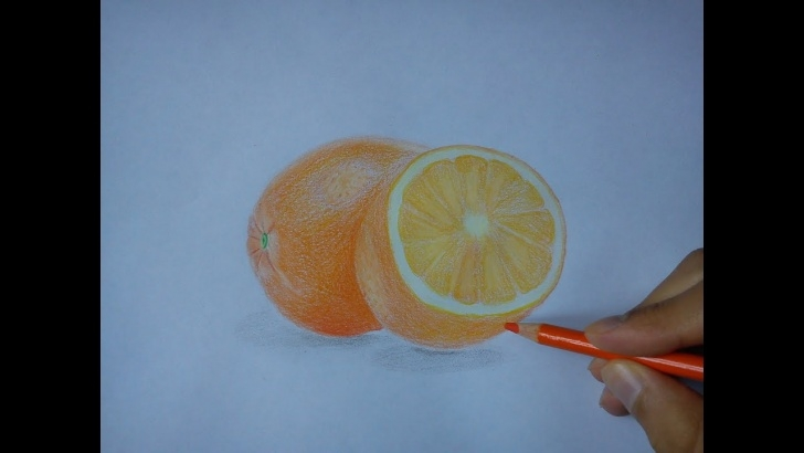 Good Orange Pencil Drawing Tutorials How To Draw An Orange - Realistic Drawing - Image