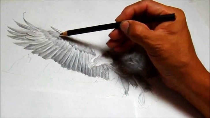 Good Pencil Drawings Of Eagles In Flight Simple Ruben's Art How To Draw An Eagle Flying Images
