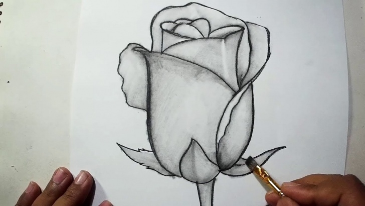 Good Rose Pencil Sketch Free How To Draw A Rose || Pencil Drawing, Shading For Beginners Photo