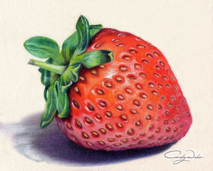 Good Strawberry Pencil Drawing Courses This Strawberry Was Created With Prismacolour Pencils On Waterford Images