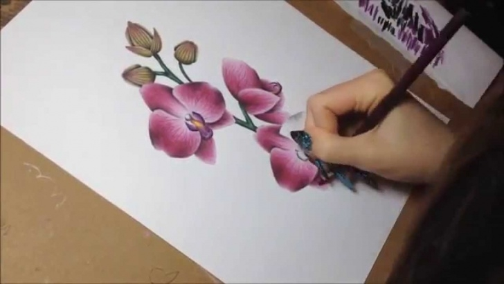 Good Watercolor And Colored Pencil Simple Drawing Orchids With Colored Pencils And Watercolor (Speeddrawing) Image