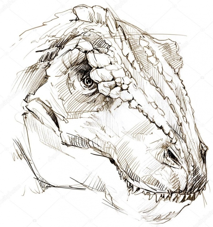 Gorgeous Dinosaur Pencil Sketch Tutorial Dinosaur. Dinosaur Drawing Pencil Sketch — Stock Photo Picture