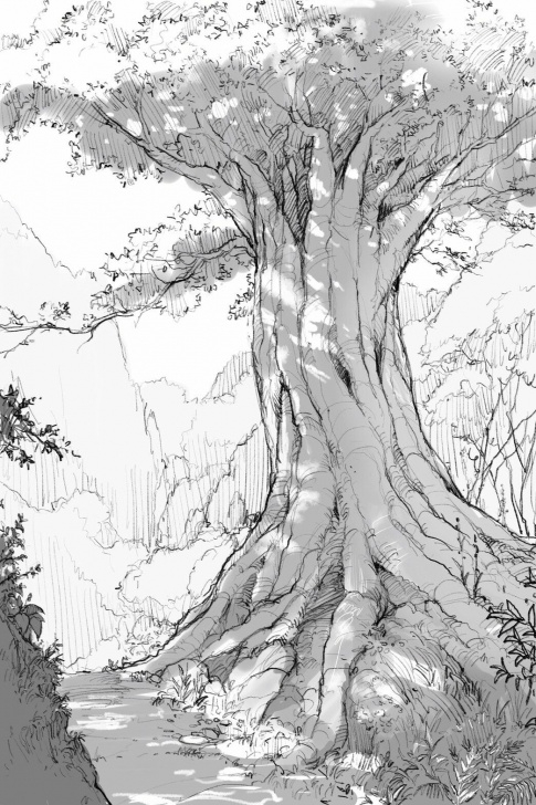 Gorgeous Environment Pencil Drawing Simple Pin By Hannah H On Bg Inspiration | Tree Drawings Pencil, Pencil Pics
