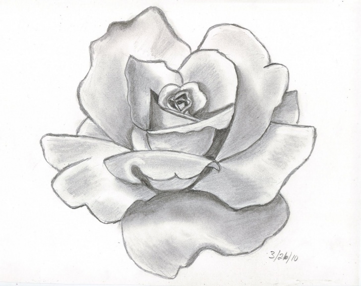 Gorgeous Flower Drawing With Pencil Free Angel Drawing Of Pencil Sketches | Rose Tattoo Designs Pencil Picture