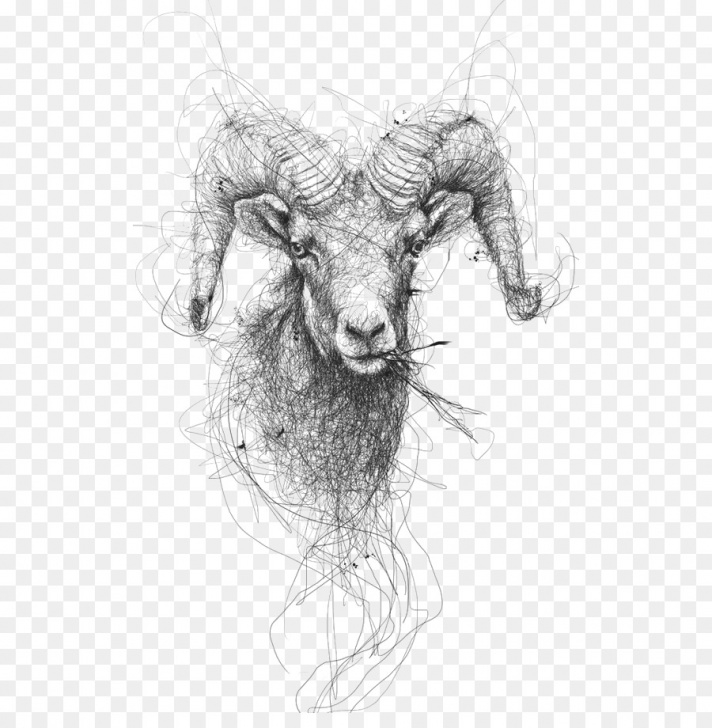 Gorgeous Goat Pencil Drawing for Beginners Cartoon Sheep Png Download - 564*901 - Free Transparent Drawing Png Images