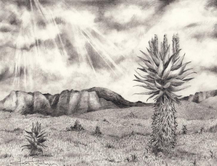 Gorgeous Graphite Landscape Drawings Simple Karoo Landscape - Graphite Pencil On Paper - 2015. Artist : Dion Photo