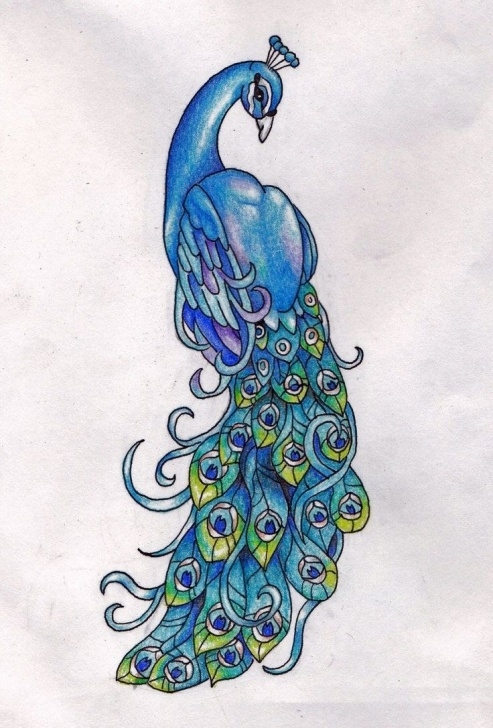 Gorgeous Peacock Pencil Drawing With Color Tutorials Simple Colorful Peacock Drawing - Cliparts.co   Art Paintings Of Images