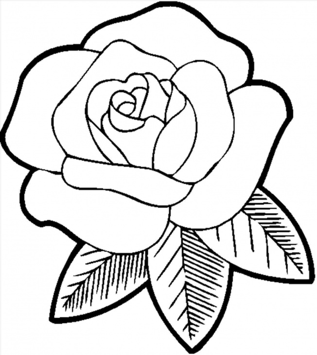 Gorgeous Rose Pencil Drawing Step By Step Free Rose Pencil Drawing Step By Step | Free Download Best Rose Pencil Photo