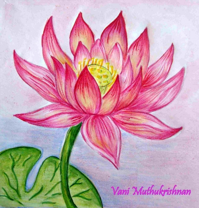 Gorgeous Shading Flowers With Colored Pencil Techniques Colour Pencil Shading Flowers | Drawing Work Images