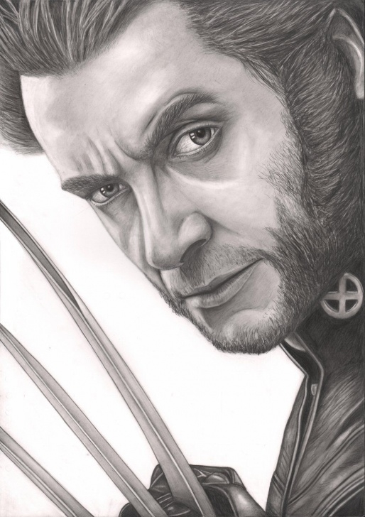 Gorgeous Wolverine Pencil Sketch Courses Hugh Jackman Wolverine Drawing By Pen-Tacular-Artist.deviantart Photo
