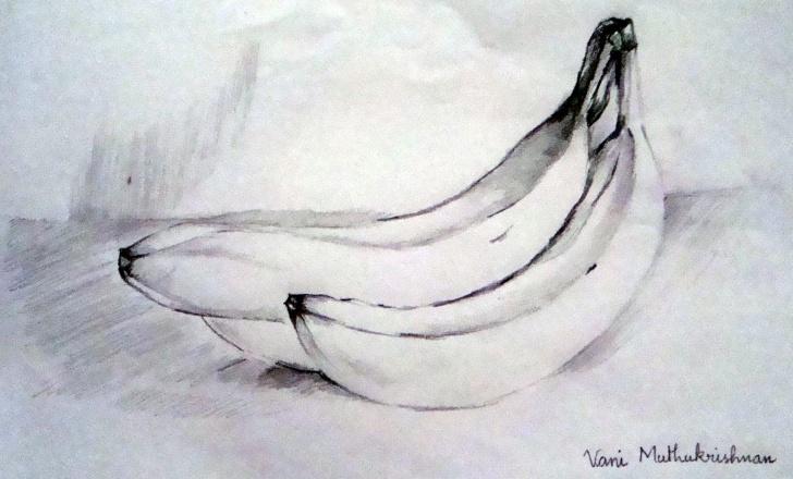 Incredible Banana Pencil Drawing Easy Banana Pencil Sketch And Easy Pencil Art Drawings - Yahoo Image Picture