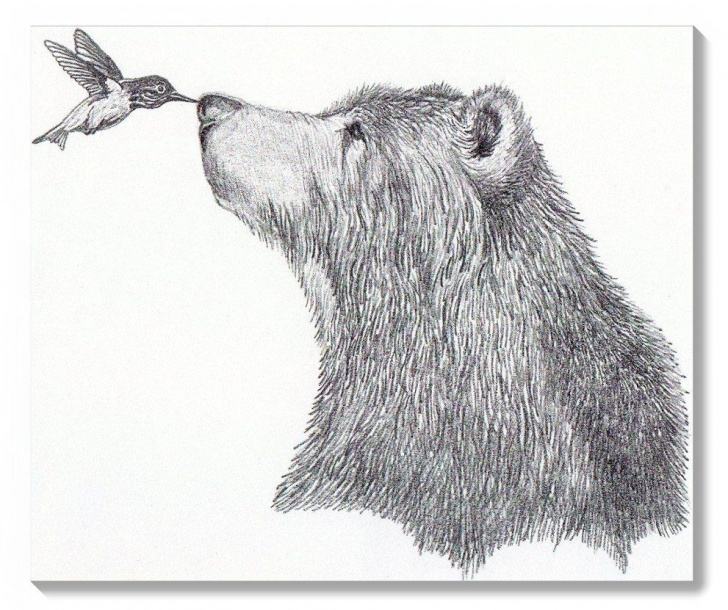 Incredible Bear Pencil Drawing Lessons Pencil Portrait Mastery - Let Me Show You How You Too Can Draw Picture