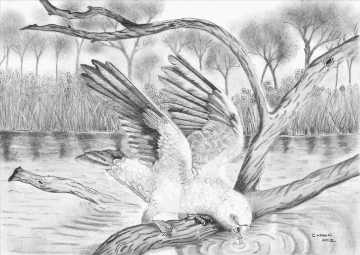 Incredible Beautiful Pencil Drawings Of Nature Tutorial Pencil Drawings Of Nature Step By Step Picture