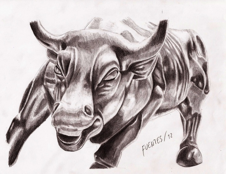 Incredible Bull Pencil Drawing Ideas Wall Street Bull Pencil Drawing Picture