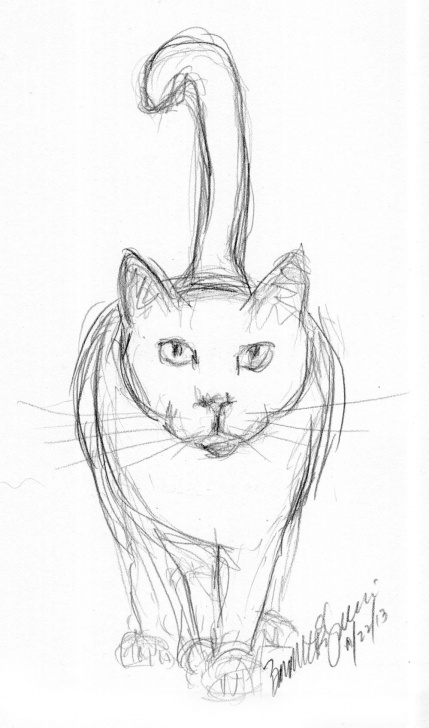 Incredible Cat Pencil Art Easy Pencil Sketch Of Cat | Daily Cat Sketches In 2019 | Animal Sketches Photos