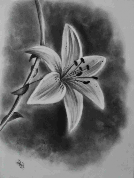 Incredible Charcoal Drawing For Beginners Tutorials Simple Easy Charcoal Drawings | Drawing Work Image