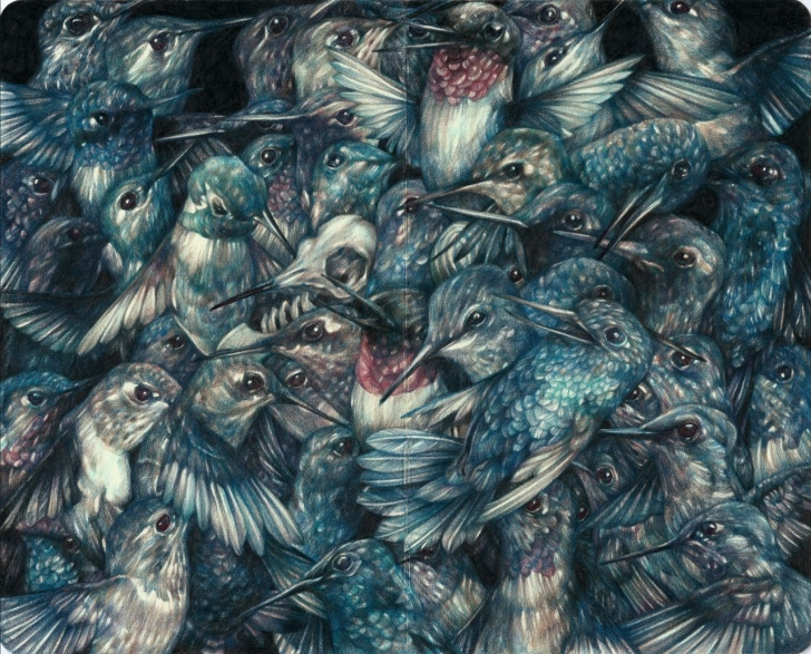 Incredible Colored Pencil Illustration Simple Detailed Colored Pencil Drawings Of Flora And Fauna By Marco Mazzoni Photo