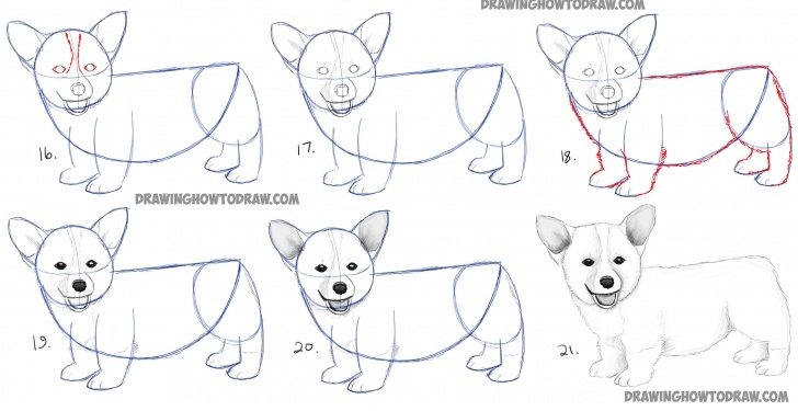 Incredible Dog Drawings In Pencil Step By Step for Beginners How To Draw A Corgi Puppy Easy Step By Step Realistic Drawing Picture