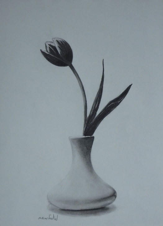 Incredible Flower Vase Pencil Drawing Step by Step Flowers In A Vase Sketch At Paintingvalley | Explore Collection Images