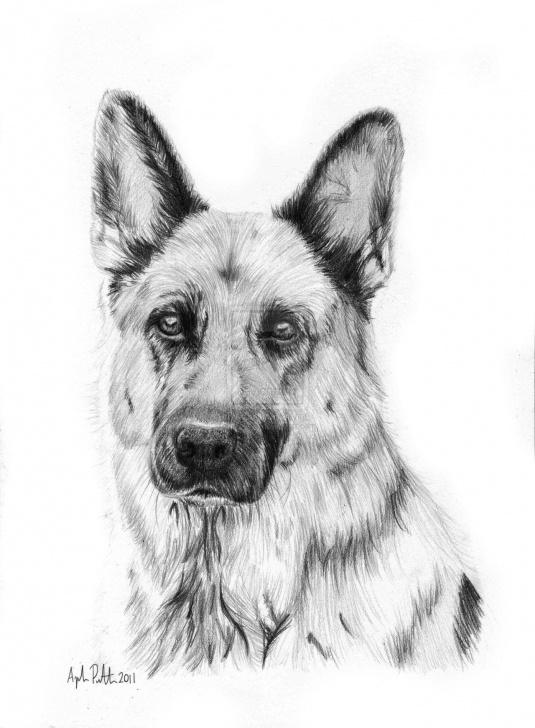 Incredible German Shepherd Drawings In Pencil for Beginners Rhina - German Shepherd By Loukya.deviantart On @deviantart Images