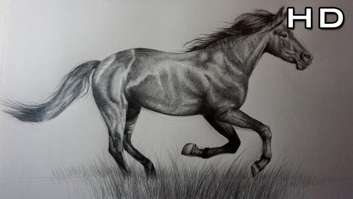 Incredible Horse Pencil Drawing Ideas How To Draw A Horse With Pencil Step By Step For Beginners Picture