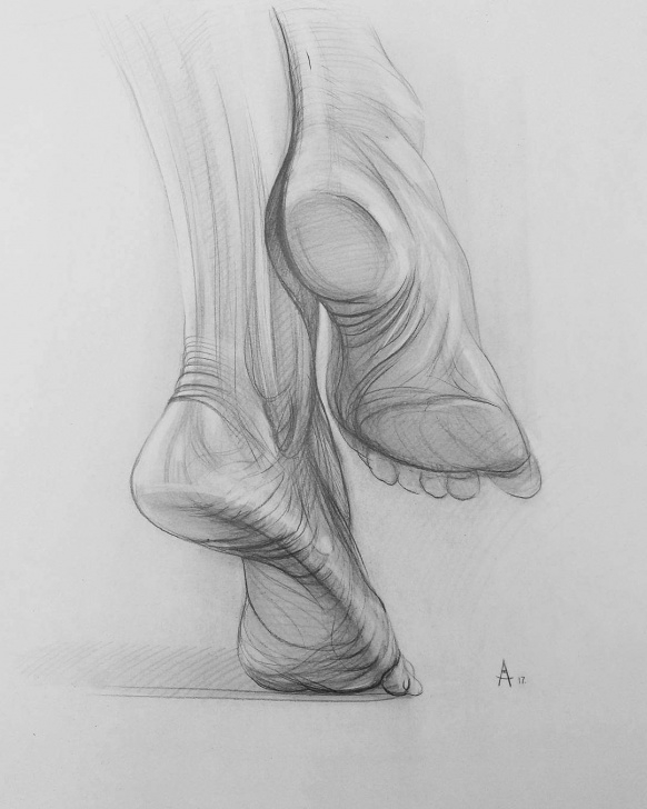 Human Body Parts Pencil Drawing