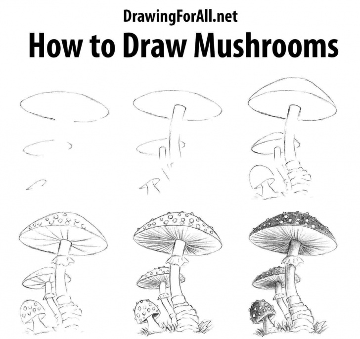 Incredible Mushroom Drawings Pencil Techniques Drawings Of Mushrooms To Draw A Mushroom Pictures