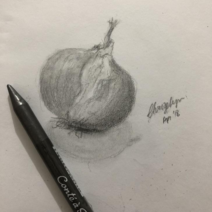 Incredible Onion Pencil Drawing Tutorial Onion #pencil #sketching #drawing #journeytoart #stilllife Photo