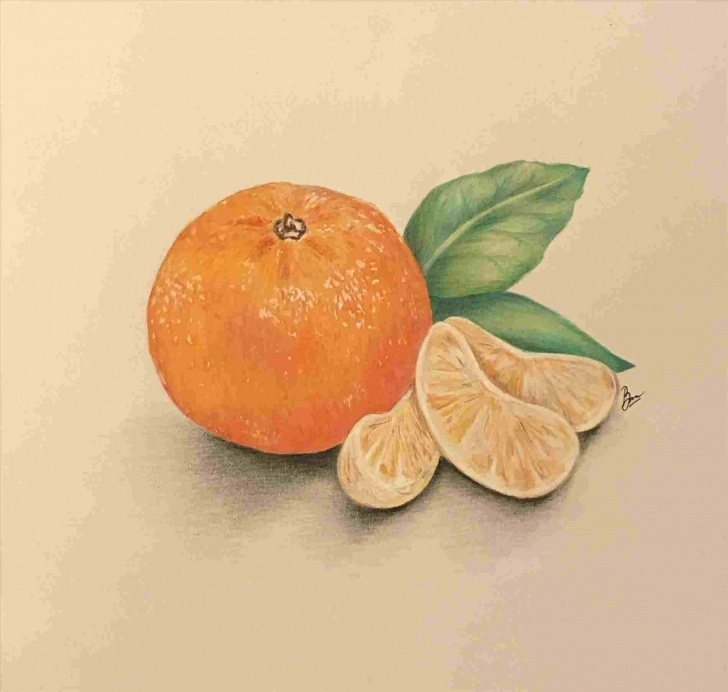 Incredible Orange Pencil Drawing Tutorial Pencil-Drawing-Of-Orange-Mango-Fruit-Youtuberhyoutubecom-Gcse-Fine Images