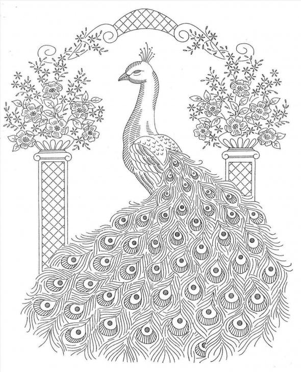 Incredible Peacock Pencil Shading Free Easy Pencil Shading Drawings Peacock | Drawing Work Pics