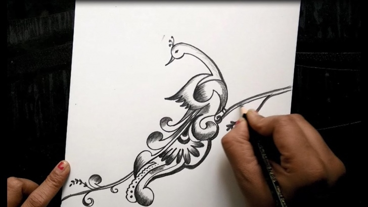 Incredible Peacock Pencil Sketch Ideas Free Hand Peacock Design With Pencil For Beginners Pic