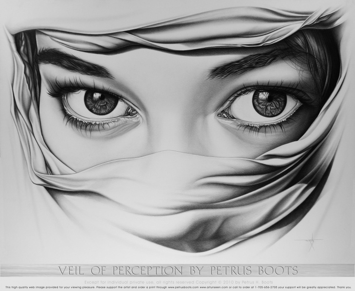 Incredible Pencil Art Drawing Ideas Veil Of Perception By Petrus Boots ~ Original Pencil Drawing ~ Art Photo