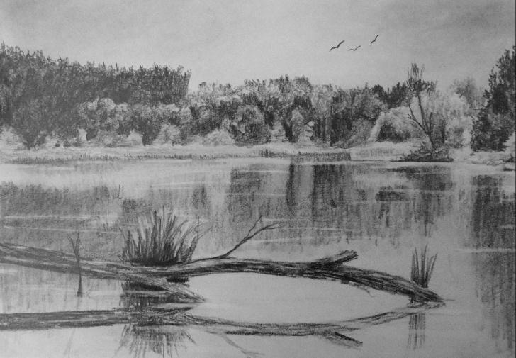 Incredible Pencil Drawing Water Tutorials How To Draw Reflective Water — Online Art Lessons Image