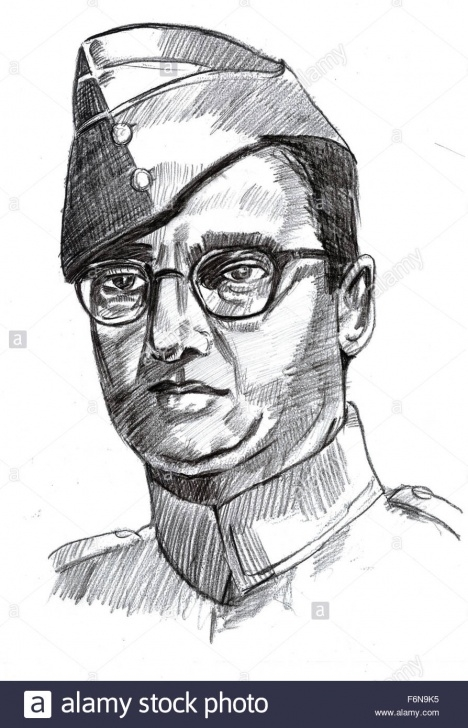 Incredible Subhash Chandra Bose Pencil Drawing Lessons Netaji Subhash Chandra Bose Sketch Stock Photos & Netaji Subhash Photo