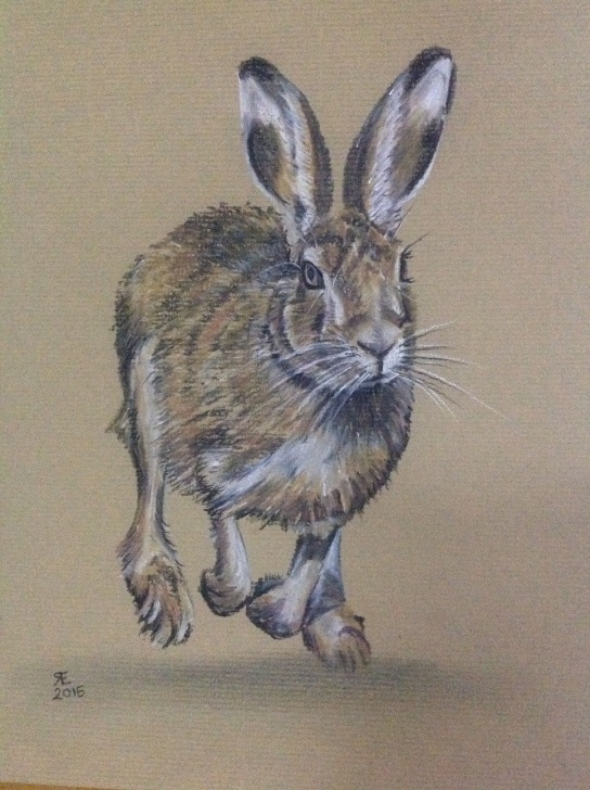Incredible Tinted Charcoal Drawings Lessons The Run- Willow Charcoal And Derwent Tinted Charcoal, On Daler Pics