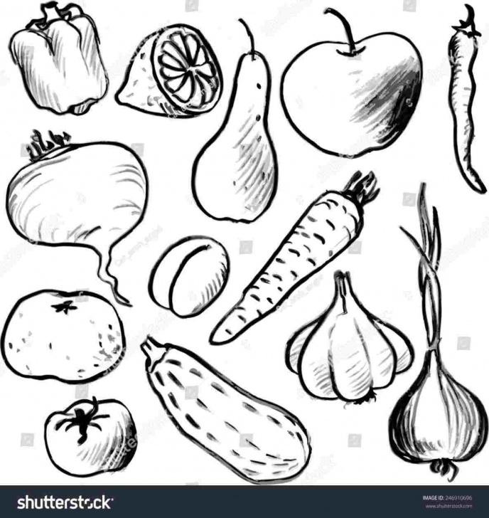 Incredible Vegetables Pencil Drawing Courses Onions Vegetables Pencil Sketch Still Life Study Pencil Drawing Art Pics