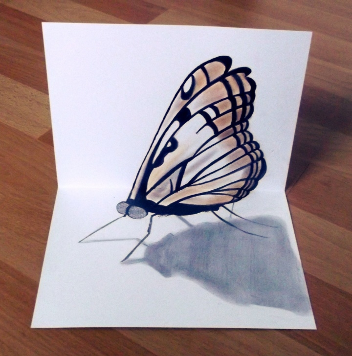 Inspiration 3D Butterfly Drawings In Pencil Tutorials 3D Butterfly | 3D Pencil Drawing | Drawings, 3D Pencil Drawings Pics