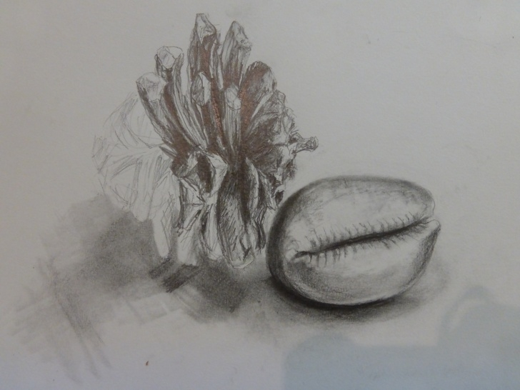 Inspiration Best Pencil Shading Drawing Courses Best Pencils For Drawing And Sketching | Creative Art Courses Photos