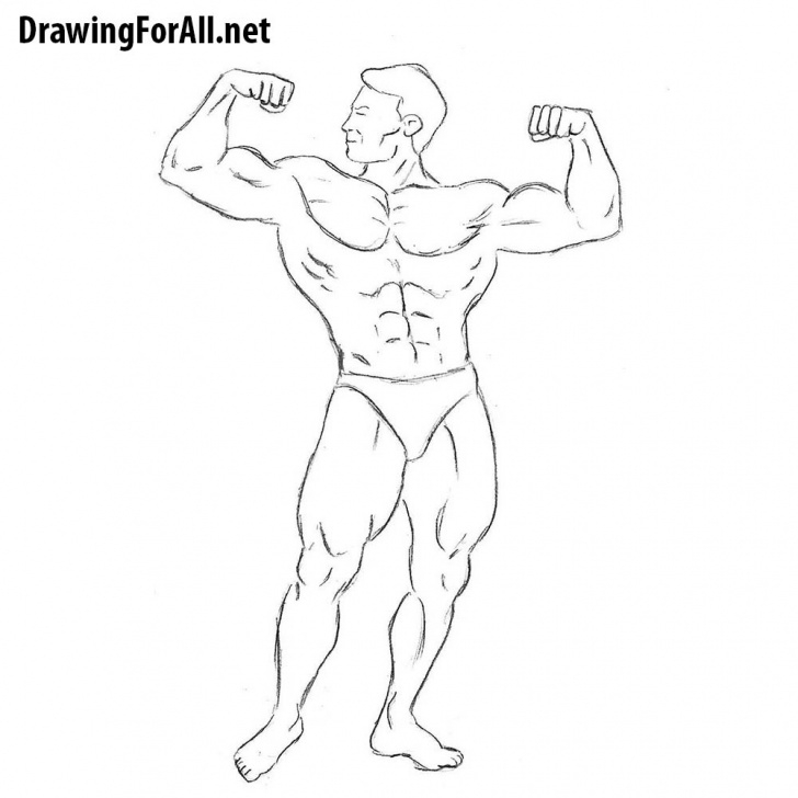 Inspiration Bodybuilder Pencil Sketch Courses How To Draw A Bodybuilder For Beginners | Drawingforall Pics
