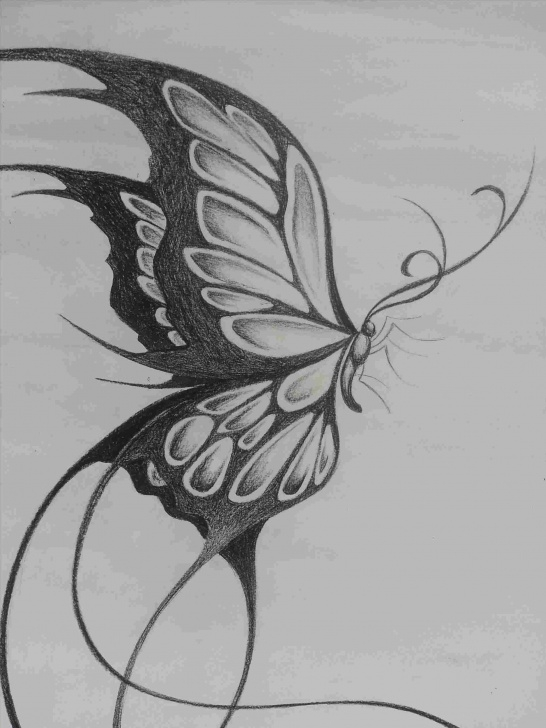 Inspiration Butterfly Drawings In Pencil Easy 3D Butterfly Drawings In Pencil Pictures