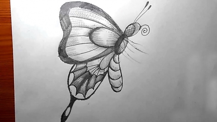Inspiration Butterfly Pencil Art Ideas How To Draw A Butterfly Pencil Drawing | Yzarts Images
