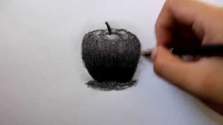 Inspiration Charcoal Art For Beginners Step by Step How To Draw An Apple Using Charcoal Pencil (Beginner) Pic