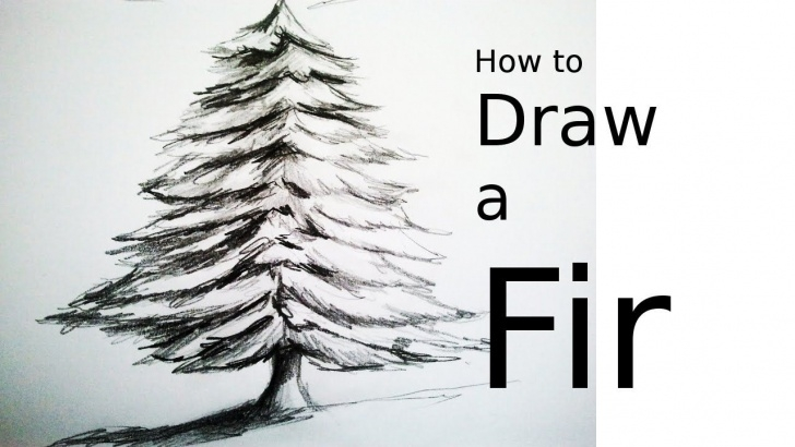 Inspiration Christmas Pencil Drawings Easy Simple How To Draw A Tree (A Fir) With Pencil | Drawing Easy And Fast For Pictures