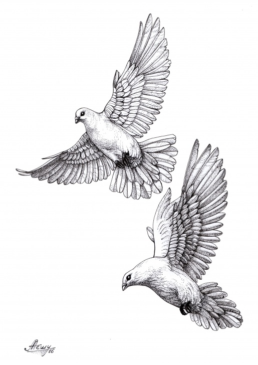 Inspiration Dove Drawings Pencil for Beginners Dove#pigeon#sketch | Drawings | Dove Tattoos, Tattoo Designs, Tattoos Photo